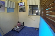 Deluxe Dog Suites - Northshore Pet Resort