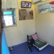 Deluxe Dog Suites - Northshore Pet Resort