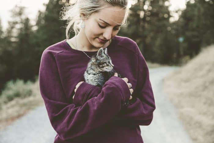 cat being held by person