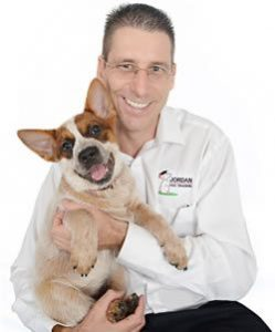 Northshore Pet Resort Dog Training